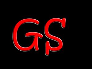 Logo GS.png